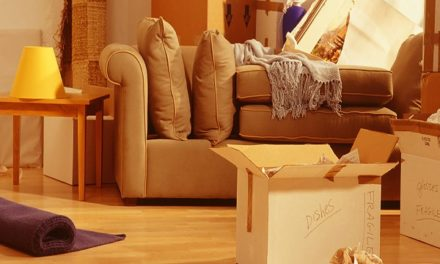 Choose the Professionals Packers Movers in Chandigarh