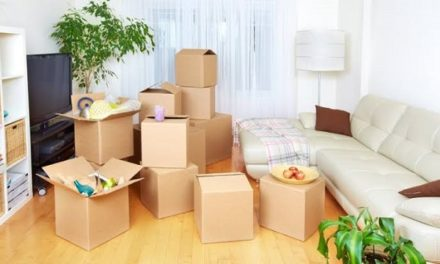 Affordable Movers and Packers Service in Mohali