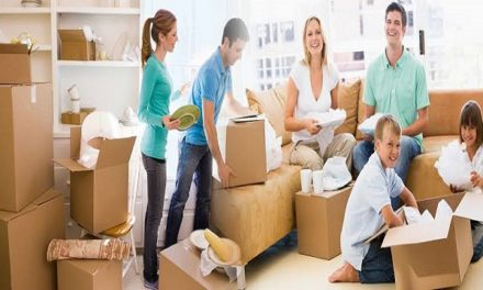 Reliable Packers and Movers in Panchkula